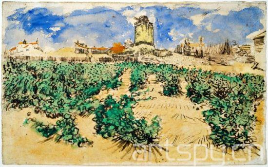 梵高风景画《葡萄藤》百年来将首次展出