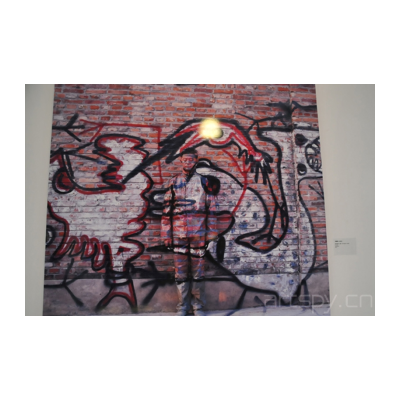 刘勃麟 城市迷彩84——涂鸦