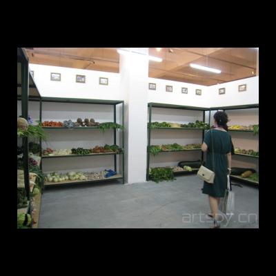王广义 卫生检疫——所有食品都可能是有毒的 1996年