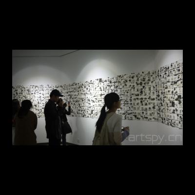 艺术家杨志麟作品《影想记》