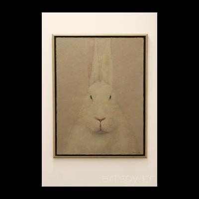 兔肖像,2010