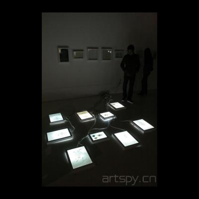 罗苇作品《透明》系列