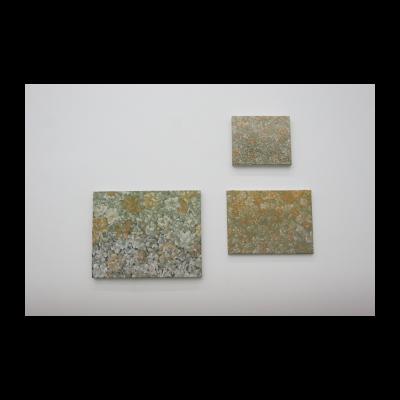 梁远苇,2013实验之中的三幅画