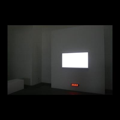 被显现的图像,2014,感应装置(静止图像由感应器和电脑控制呈现),彩色,无声,感应器,液晶显示器,
