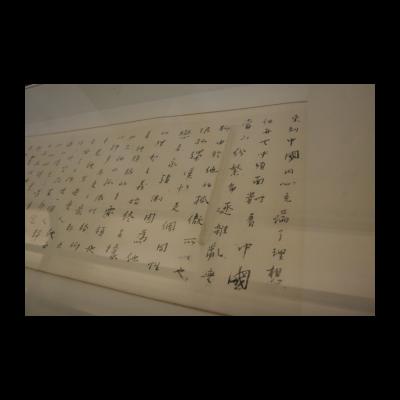 洪磊,《汉斯与我》,2014