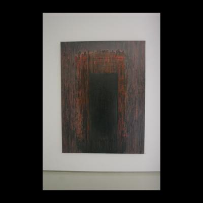 金闪,门,2013