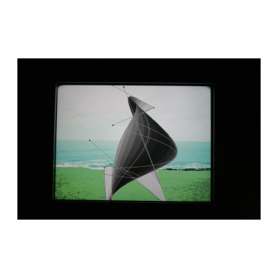 名称:虚拟内存的风/年代:2013 /材质:4:3, 录像或录像装置/时长:01:00 无限循环/版