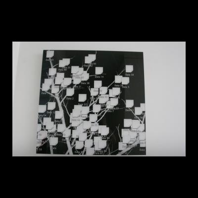 名称:数据叶/年代:2013 / 材质:收藏级打印/尺寸:57.56×57.56cm/版本:6+1A