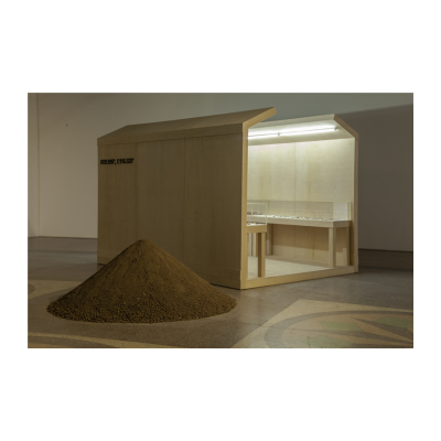 苏文祥,《如你所愿》,尺寸可变,2014