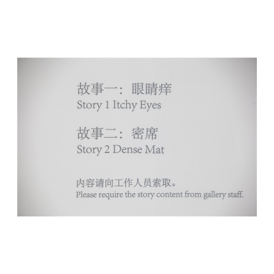 陆平原,概念作品 故事一《眼睛痒》故事二《密席》,2014