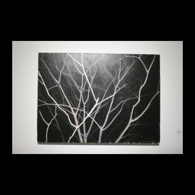 龚剑,看这棵灰色的树NO.2,2013