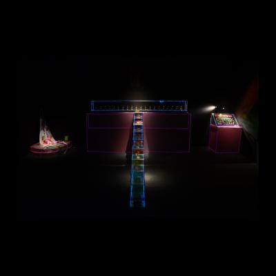 叶甫纳,指甲美术馆,装置,360x125x60cm,2015