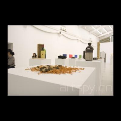 艺术家把自家收藏的东西拿了出来,这是野生菇啊,海参等补品
