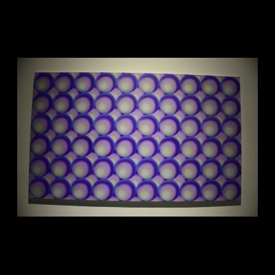 李殊睿 《紫色珍珠上的高光》 2008