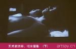艺术家讲座:似水留影  (下)(视频)