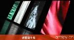 胡晓媛个展(视频)