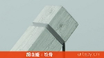胡晓媛:蚁骨(视频)